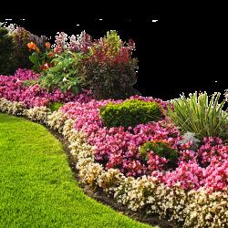 Tuinieren en buiten